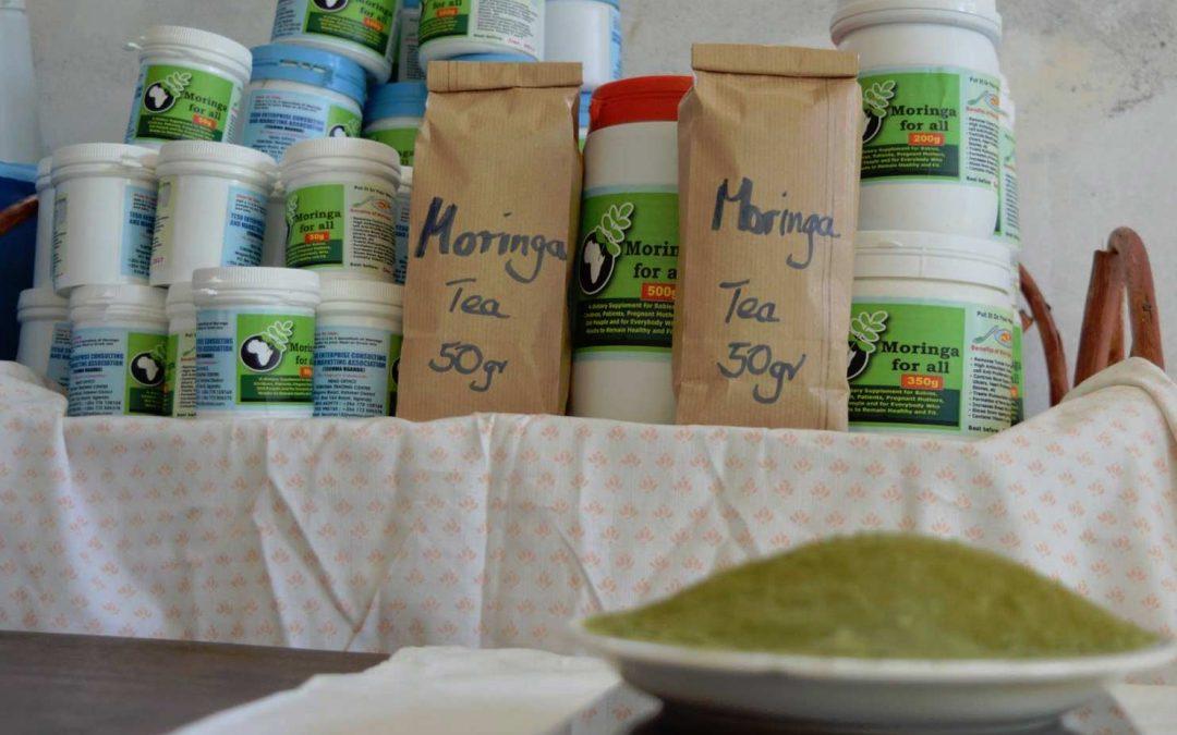 Healthful Benefits of Moringa